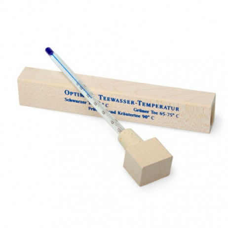 Termometro da infusione