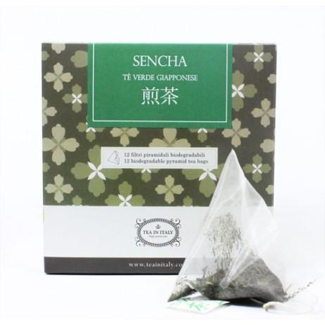 Sencha Bio Filtri Piramidali