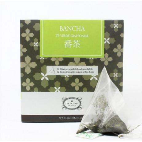 Bancha Bio Filtri Piramidali