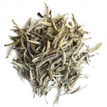Silver Needle Fuding - Tè bianco