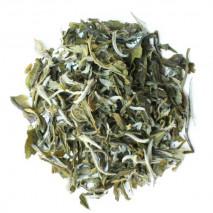 Lu Xue Ya Snow Bud - Tè Verde